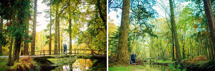 Rhinefield-Ornamental-Drive-New-Forest-Hampshire-Wedding-Photographer-Steve-and-Claire-Engagement-Session-Photography-By-Vicki010