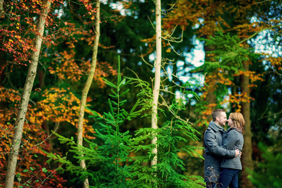 Rhinefield-Ornamental-Drive-New-Forest-Hampshire-Wedding-Photographer-Steve-and-Claire-Engagement-Session-Photography-By-Vicki016