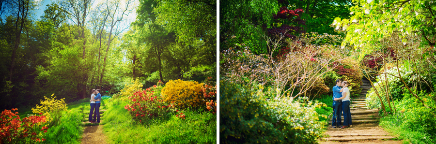 Winkworth-Arboretum-Surrey-Wedding-Photographer-Phil-and-Nicky-Engagement-Session-Photography-By-Vicki004