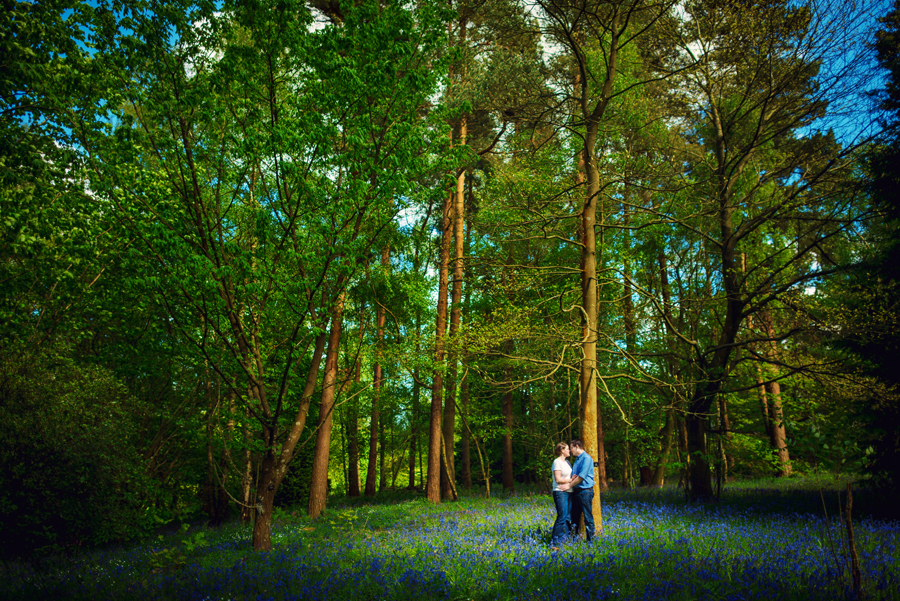 Winkworth Arboretum - Surrey Wedding Photographer